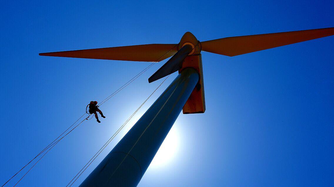 Auge del sector de las renovables